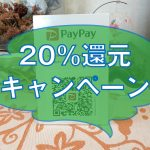 PayPay決済で20%還元スタートです。